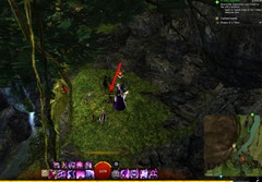 gw2-dreams-of-a-thorn-collection-guide-17