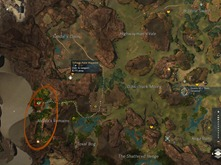 gw2-dreams-of-a-thorn-collection-guide-19